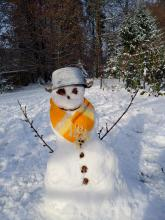 Nik's snowman